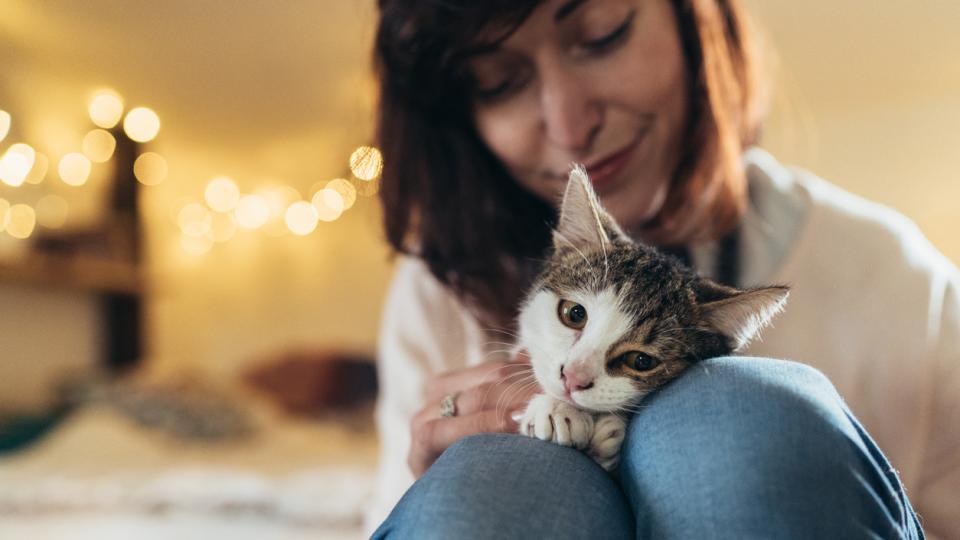 котка жена хороскоп