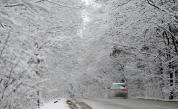 Студ и сняг в цяла Европа, жертва на лавина