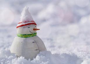 18 януари е Световен ден на снежния човек