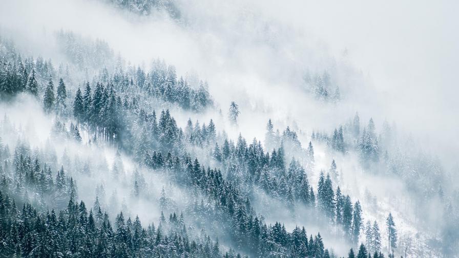 Жена пострада при преход в планината