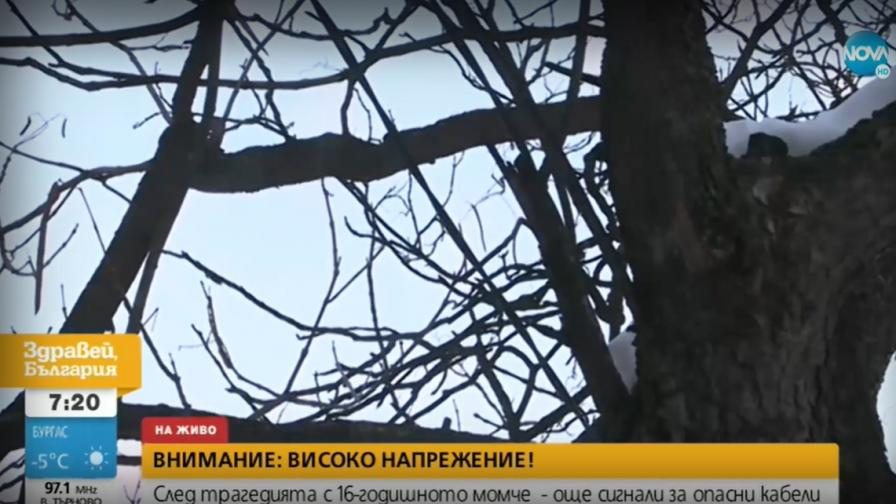 Кабели с ток по дървета край детска площадка в София