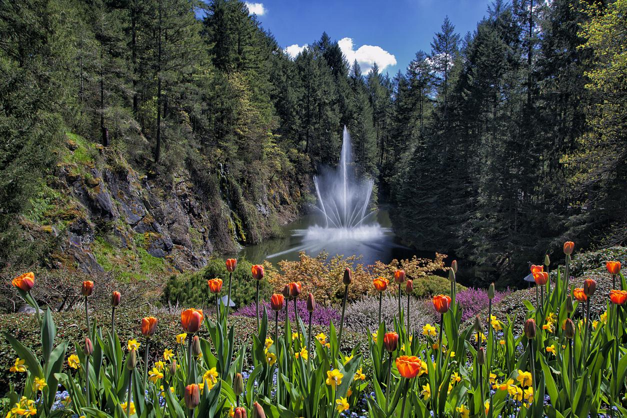 <p>Градините Бучарт, Канада</p>