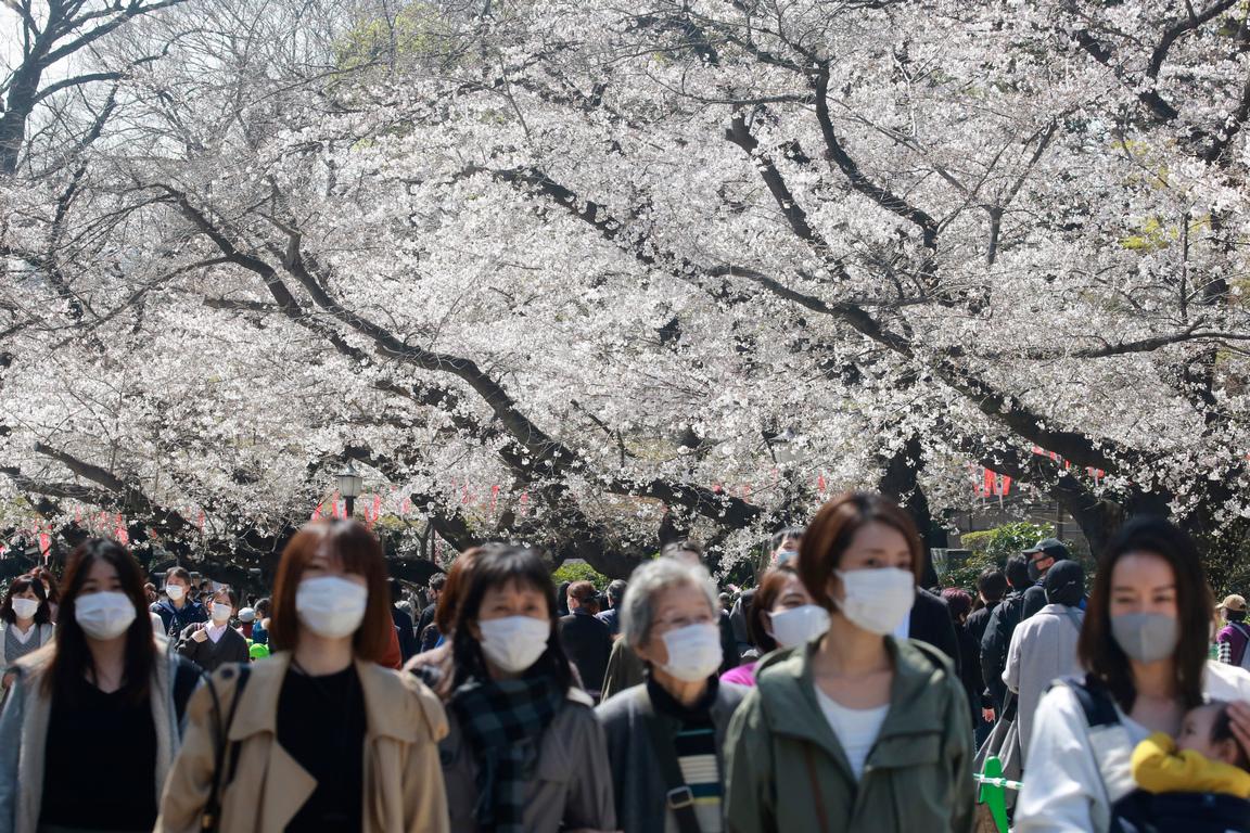 <p>Хора, носещи маски за лице, за да се предпазят от разпространението на коронавируса, се разхождат под черешовите цветове в Токио, Япония</p>