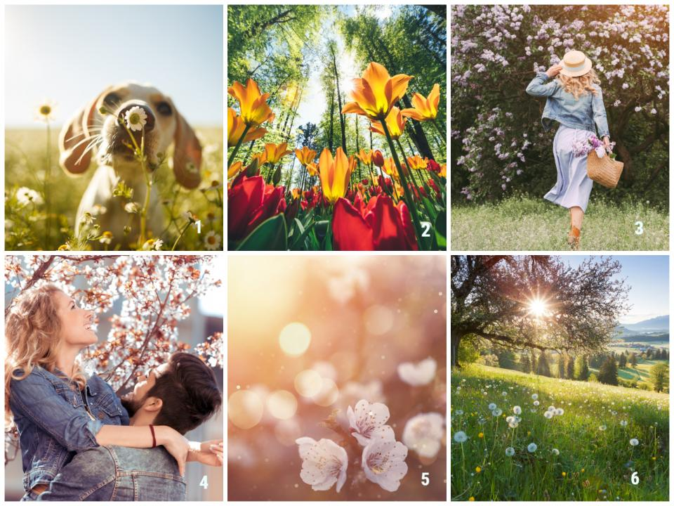 пролет април картинки
