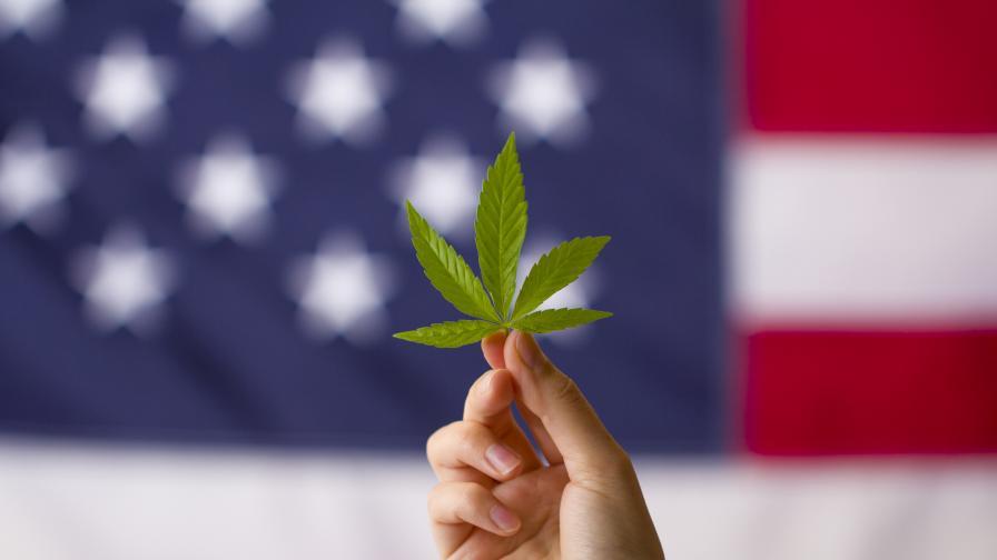 Ню Йорк узакони марихуаната за развлекателни цели