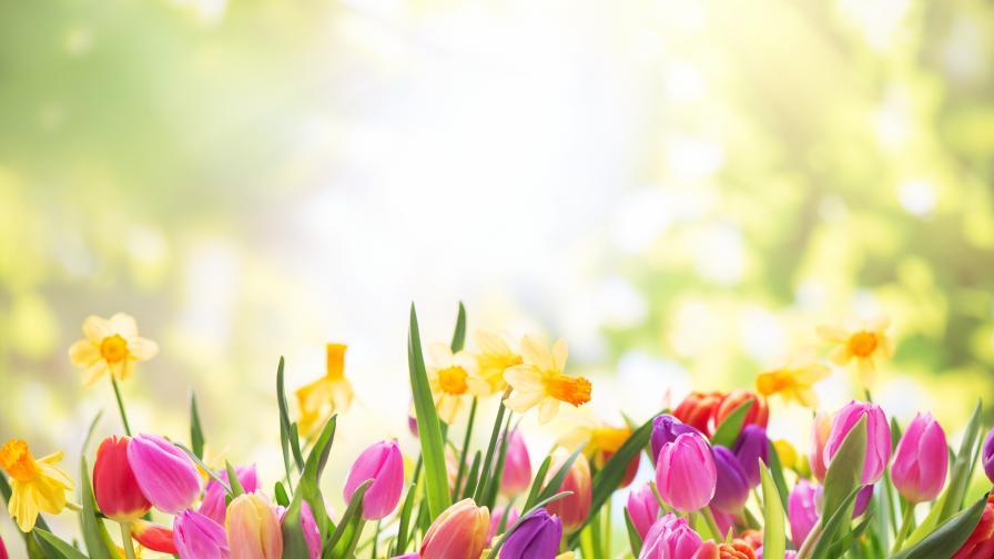 Слънчево време днес, връща ли се пролетта