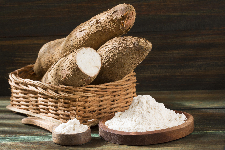 <p><strong>Маниока</strong></p>  <p>Тропическа коренова култура, която често се използва при приготвяне на пудинг, сок, чипс или различни сладкиши. Опасността тук се крие в листата и корените на растението, които съдържат смъртоносен цианид. Съществуват два вида маниока &ndash; сладка и горчива, като всяка от тях има различни техники на приготвяне, за да бъдат намалени максимално нивата на токсина, който сдържа.&nbsp;</p>