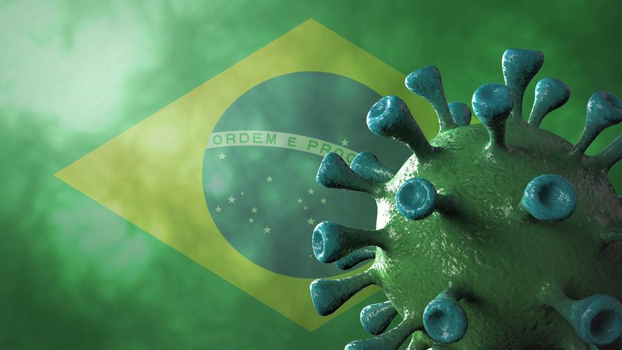 Откриха нова разновидност на COVID-19 в Бразилия