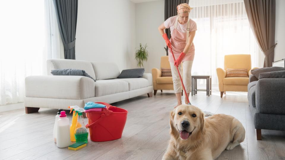 Какво трябва да знаете за чистенето с белина
