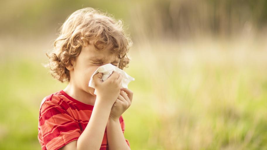 Кои са най-честите алергии при децата?