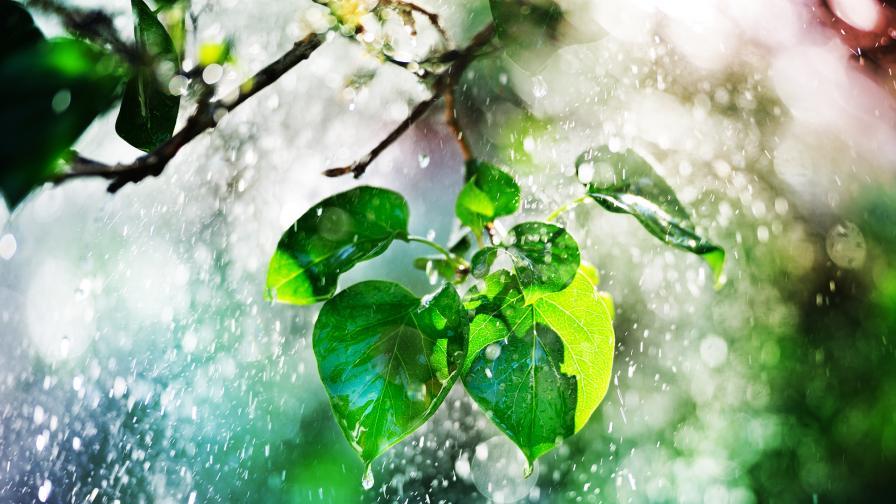 Слънце и дъжд в понеделник