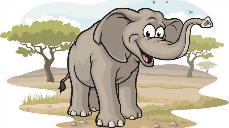 <p>От гигант до джудже: Слонът, който загуби 8000 килограма</p>