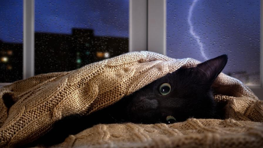<p>Бурите продължават, кога ще спре да вали</p>