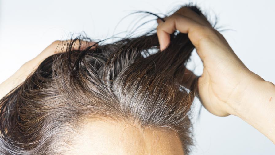 <p>От сива към тъмна коса без боядисване?</p>