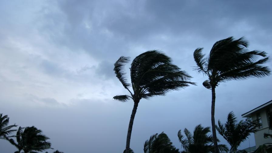 <p>Хаос на Карибите, бурята Елза се усили до ураган</p>