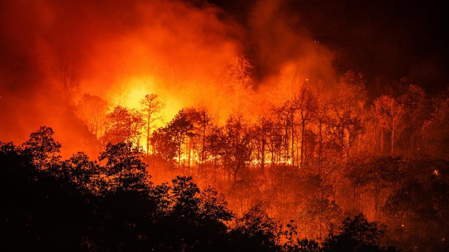 Нов пожар в Сакар планина