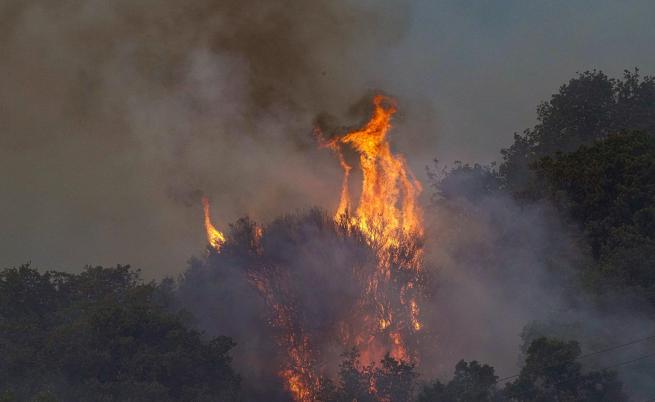 Пожарите достигнаха Катания, хора бягат от къщите си