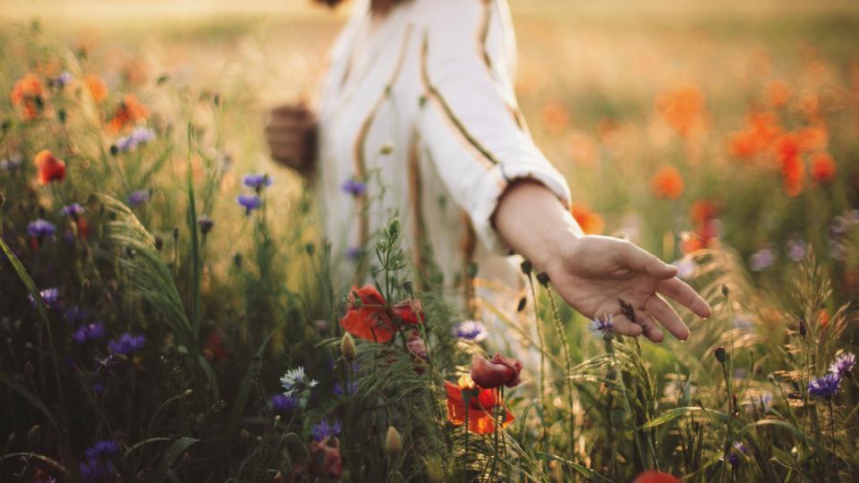 жена природа залез цветя лято пролет слънце