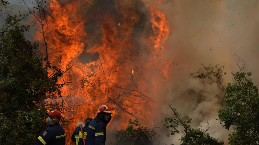 Ужасът на пожарите в 2 снимки: Какво сподели Елиф Шафак