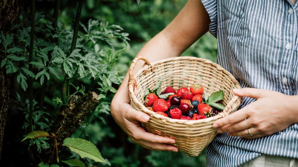 горски плодове жена