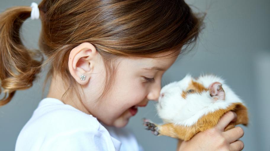 6-те най-подходящи малки домашни любимци за малчуганите