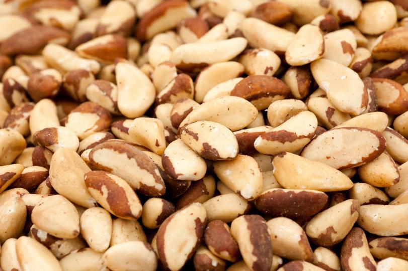 <p><strong>Селен&nbsp;</strong>- най-важният елемент в тази ядка, който участва във всички метаболитни процеси в организма, осигурява антиоксиданта защита, укрепва имунната система. Бразилският орех е един от най-добрите&nbsp;източници на селен&nbsp;сред храните.</p>  <p><strong>Магнезий</strong> - има положителен ефект върху чревната перисталтика и правилната жлъчна секреция. Подпомага за подобряване функционирането на сърцето и кръвоносните съдове.</p>  <p><strong>Мед </strong>- подобрява обновяването на костната тъкан, помага на тялото да усвоява по-добре кислорода.</p>  <p><strong>Фосфор </strong>- влияе върху функционирането на мозъка, подобрява състоянието на костната тъкан.</p>  <p><strong>Аргинин</strong>&nbsp;-&nbsp;аминокиселина, която насърчава съсирването на кръвта.</p>  <p><strong>Витамин В1&nbsp;</strong>- необходим за нормалното протичане на повечето реакции в организма и не е на разположение за независим синтез.</p>  <p><strong>Протеини</strong> - служат като строителен материал за клетките и тъканите,&nbsp;формират имунитет, влияят върху процеса на усвояване от организма на мазнини, минерали и витамини.</p>  <p><strong>Мазнини </strong>- изпълняват пластичните, енергийни и защитни функции на тялото.</p>