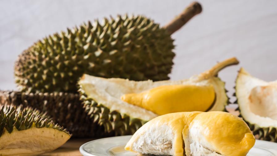 <p>Странното приложение на най-миризливия плод в света&nbsp;&nbsp;</p>