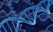 <p>Десет невероятни факта за кода на живота - ДНК</p>