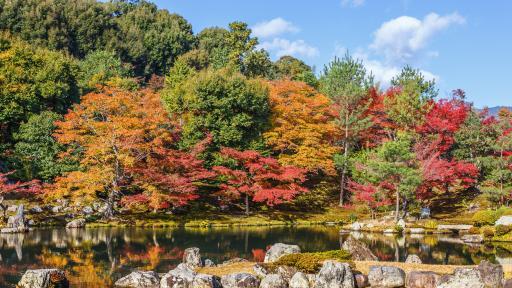 https://m3.netinfo.bg/media/images/47953/47953911/512-288-hram-tenryu-ji.jpg
