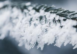 Предстоящата зима ще е по-студена