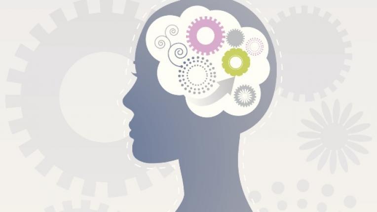 умна жена мозък знания