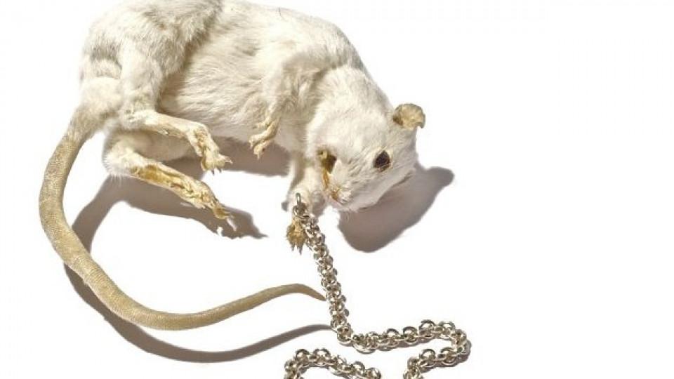 Медальон с висулка мишка