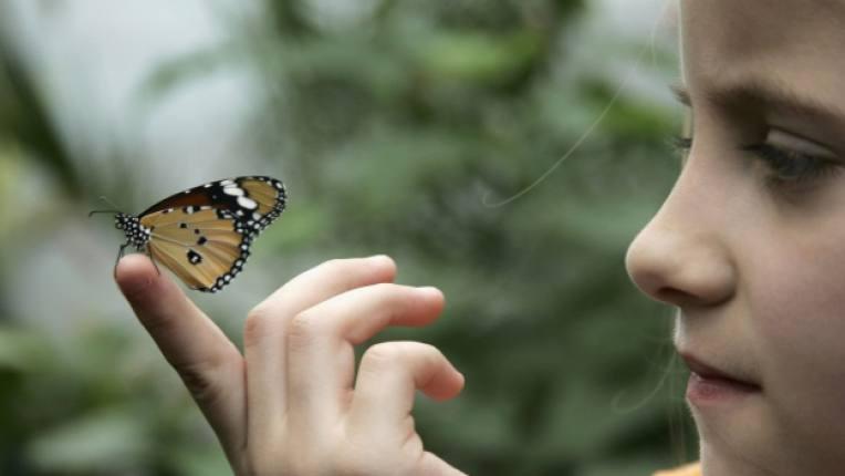 деца природа екология