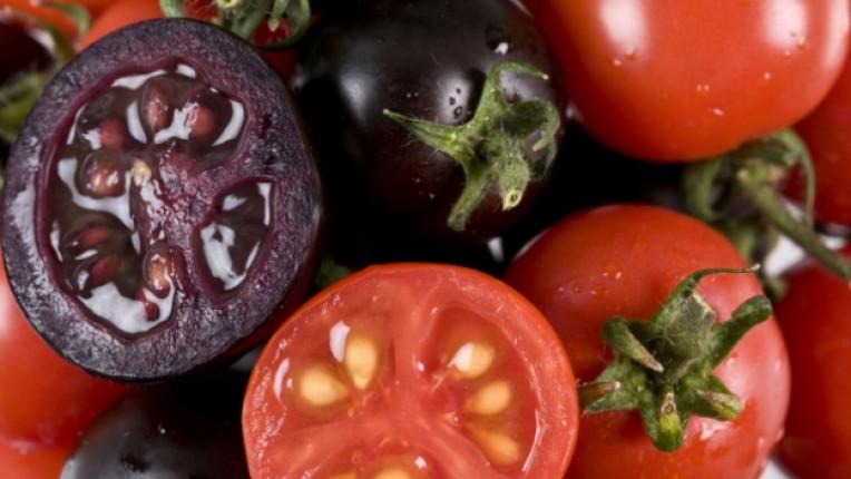 диета продължителен период нулев вфект