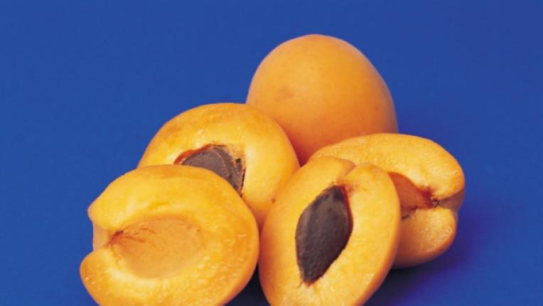 кайсии антиоксиданти фибри козметична маска етерично масло сладка ликопен сърдечносъдова