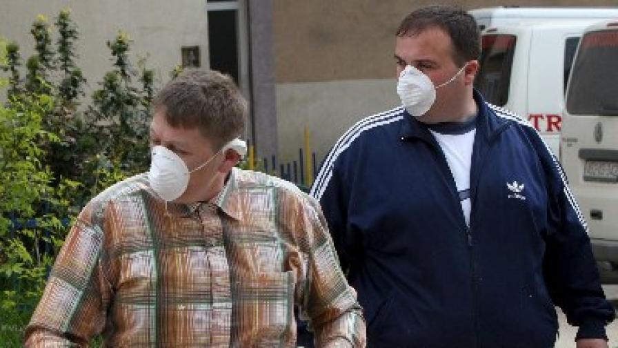 """""""Разчетоха"""" генетичния код на вируса на свинския грип"""