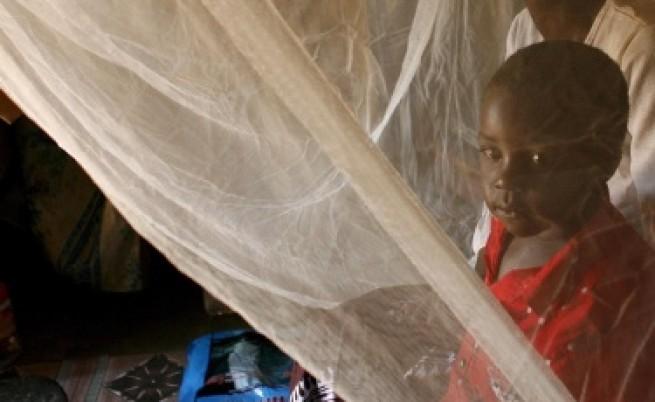 Африка се обединява в борбата с маларията