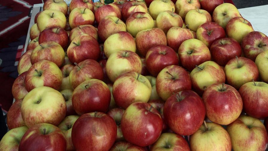 """Създадоха почти """"вечна"""" ябълка"""