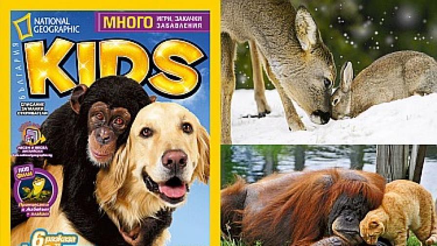 """""""Животни приятели"""" е темата на детското списание за декември"""