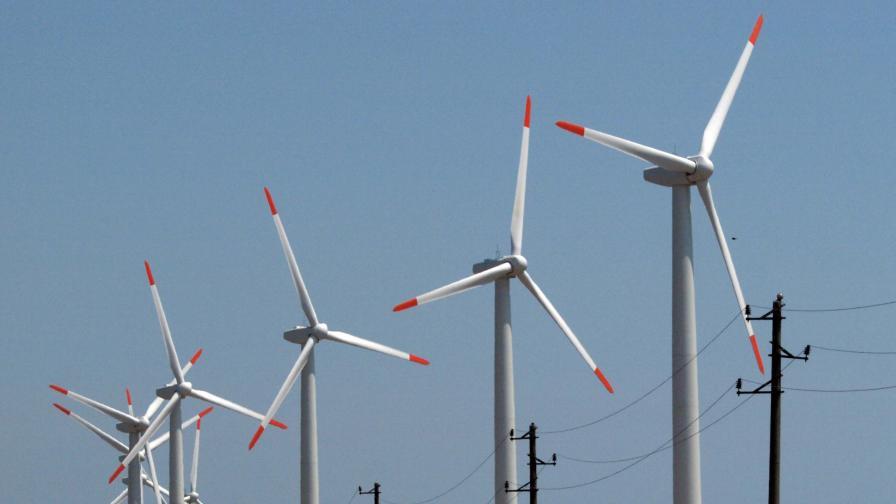 Еколози искат по-високи данъци...
