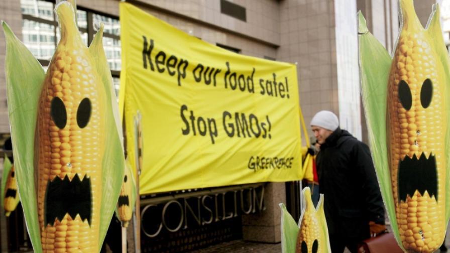 Протестите срещу ГМО са всекидневие в цяла Европа
