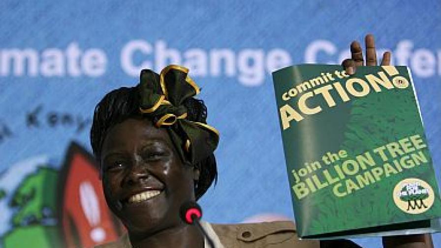 Вангари Маатаи през 2006 г.