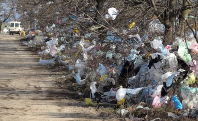 89% искат премахване на найлоновите торбички