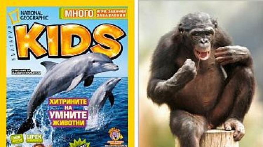 Юлският NGKids: Животните помнят