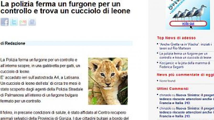 Хванаха български камион с лъвче в Италия