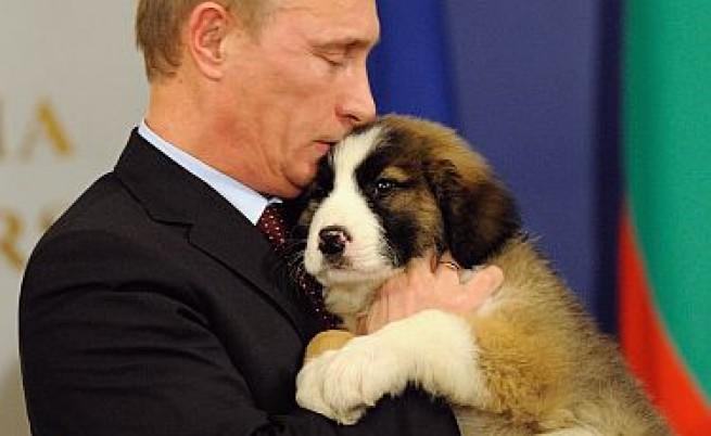 Путин кръсти кученцето Йорго с името Бафи