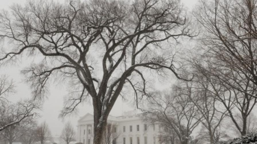 Климатични аномалии измъчват САЩ