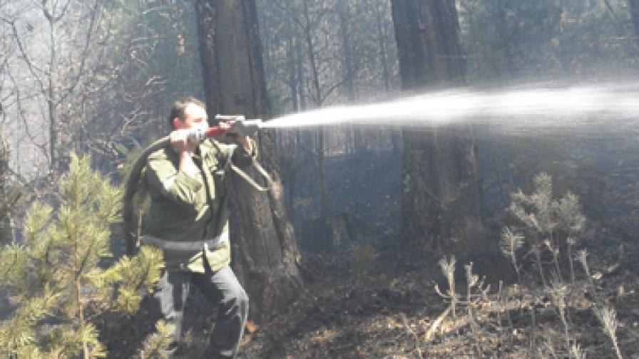 Продължават да гасят пожара край Банско