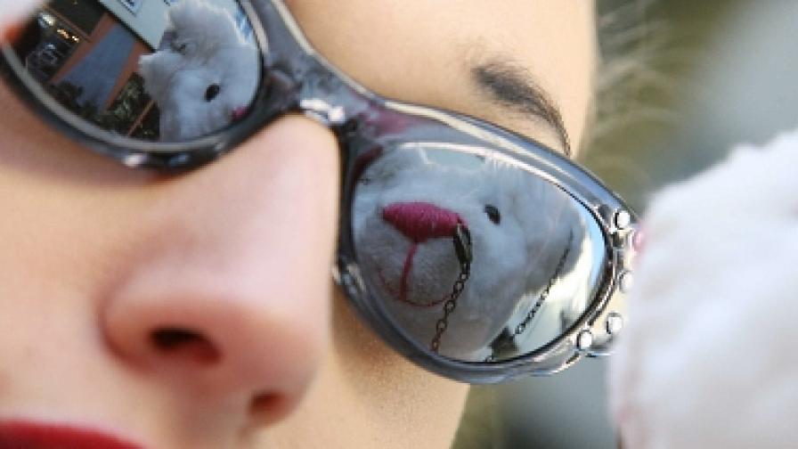 Слънчевите очила - ретро и екстравагантни