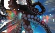 <p>Когато октоподите сънуват: игра на тайнствени цветове</p>